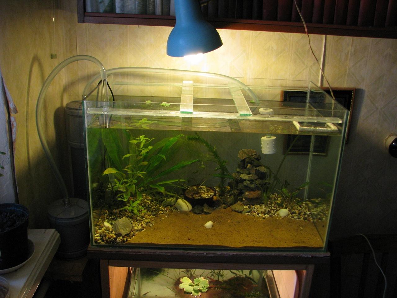 Внешний фильтр для аквариума фото 6