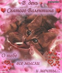 Алёна Гневашева, 5 августа 1995, Коркино, id121199182