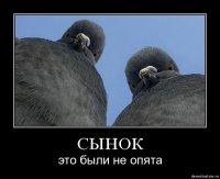 Рафаэль Халисин, 15 марта 1996, Екатеринбург, id67910309