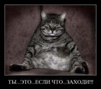 Дима Замес, 28 июня 1999, Киев, id131070145