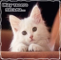 Dashulya Solovyova, 17 апреля , Заринск, id140100816