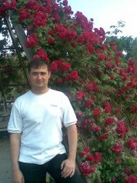 Mansur Muhamadeev, Навои