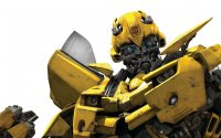 Bumblebee Stock Images RoyaltyFree Images amp Vectors