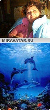 Скачать обои Дельфины.