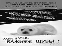 Денис Падиков, 13 августа , Салехард, id101449474