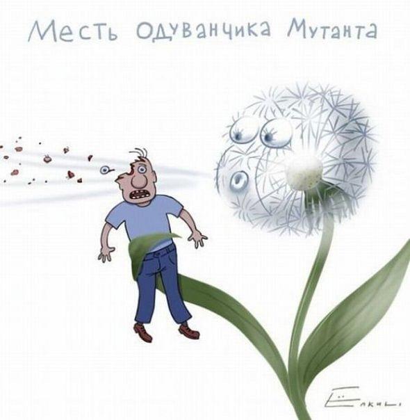 http://cs9789.vkontakte.ru/u18686000/134694020/x_28d4d405.jpg