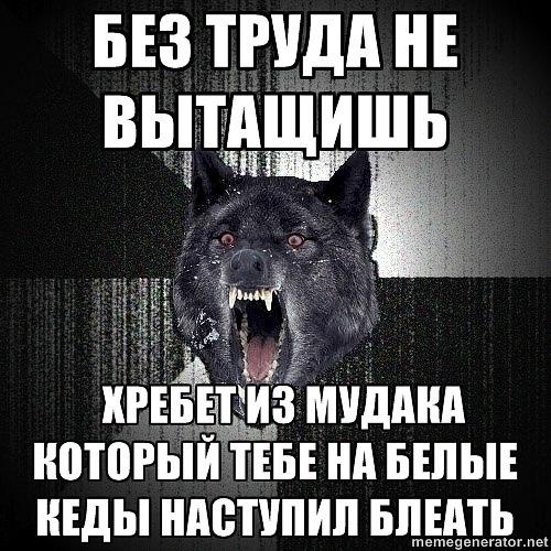 http://cs9803.vkontakte.ru/u107200365/140182275/x_f54b9abb.jpg