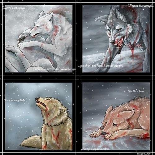 статусы по волчьи