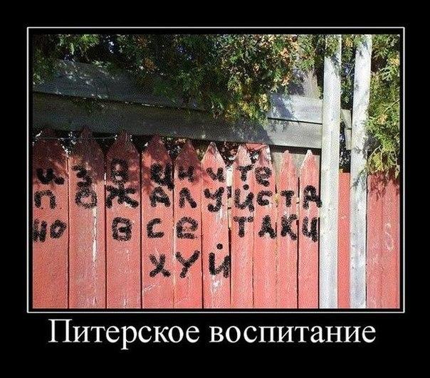 http://cs9805.userapi.com/u148324996/-14/x_cf4b711d.jpg