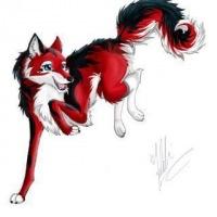 волки картинки аниме