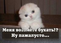 Макс Тихомиров, 24 сентября 1997, Сосногорск, id98096685