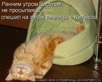 Дарья Башкина, 20 февраля , Кемерово, id135831843
