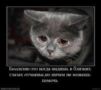 Yarkomuha Gerj, 11 февраля , Донецк, id76421501