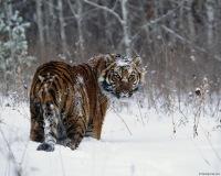 Глеб Глебов, 5 января , Уфа, id138281789