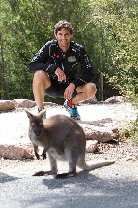 Австралия - место, где вы живете бок о бок с природой
