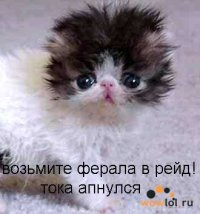 Максим Спицкий, 12 февраля 1988, Запорожье, id47878546