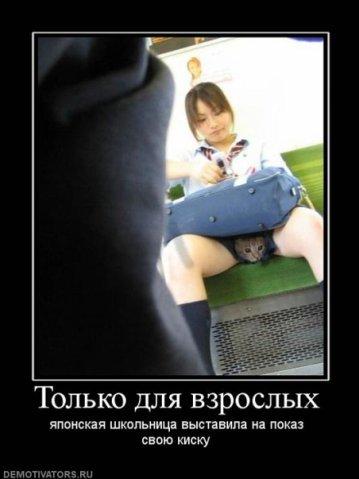 Купить футболку с надписью в Щёлково