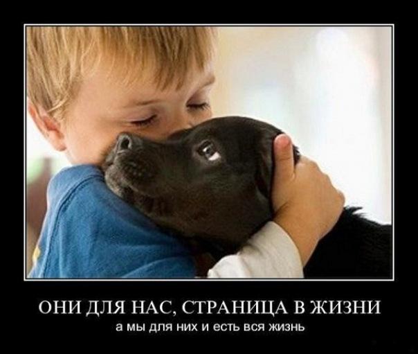 http://cs9831.vkontakte.ru/u82290416/-14/x_5f1e35fc.jpg