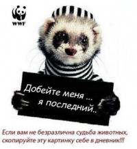 Витя Козак, 10 июля , Санкт-Петербург, id120954226