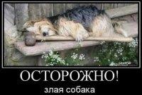 Денис Фархетдинов, 11 апреля , Выборг, id75791942