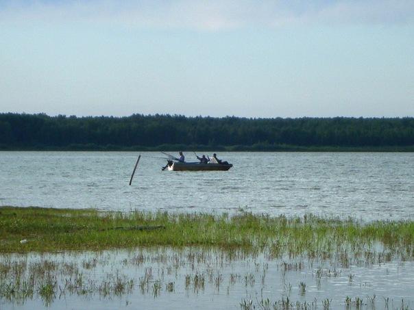 Озеро Янтык летом