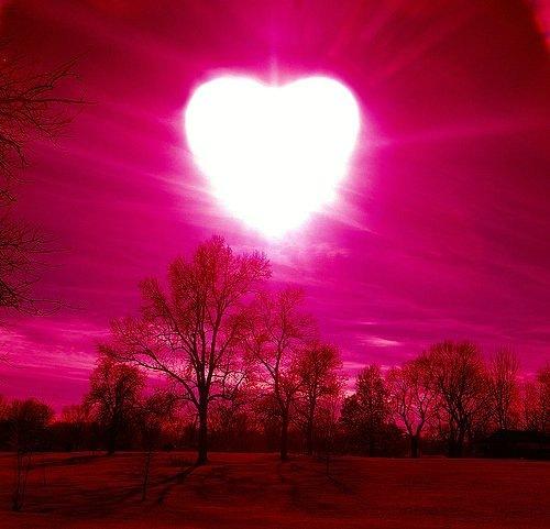 Серце, кохання статуси про кохання