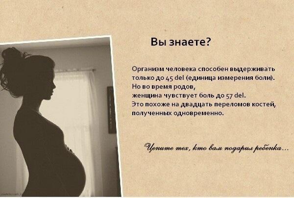 Елена Ковтун | ВКонтакте