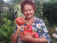 Ольга Шмигель-Скворцова, 1 июня 1997, Ейск, id160773446