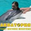 Дельфинотерапия Ялта - Dolphin therapy