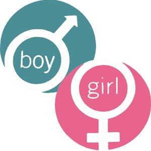 Твой компьютер мальчик или девочка