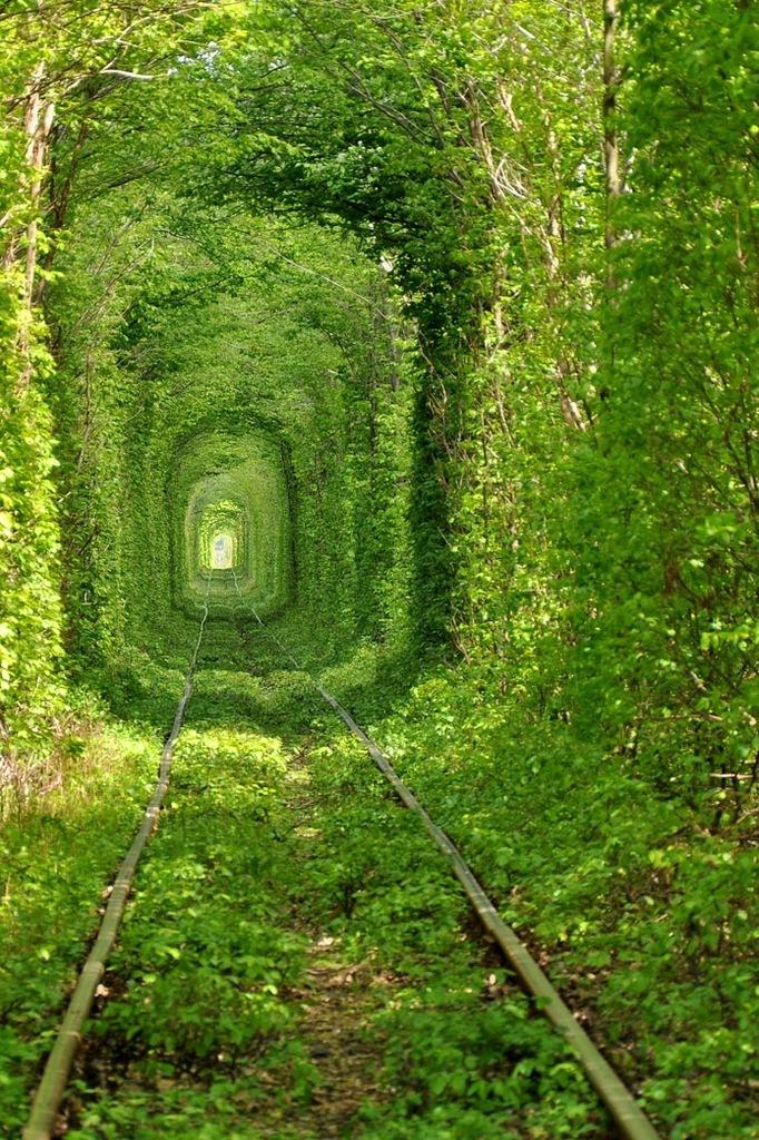 Тоннель любви в городе Клевень, Украина.
