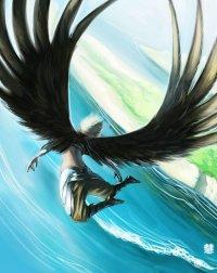 Человек может летать аки птица!