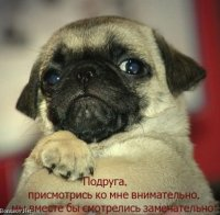 Антон Голушкин, 21 января , Зеленоград, id67561695