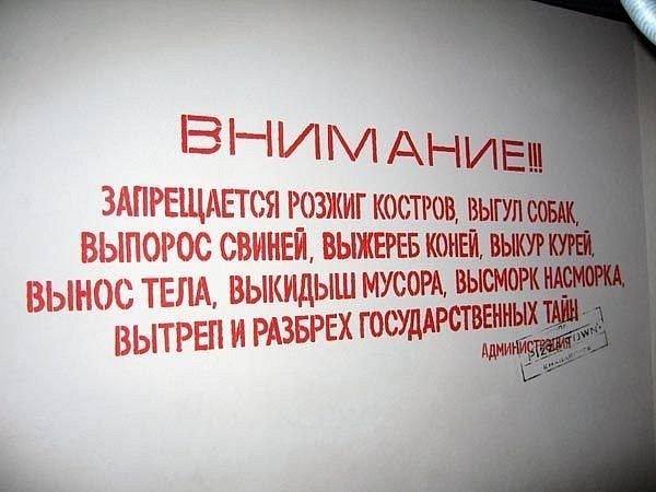 http://cs9864.vkontakte.ru/u6926669/135097868/x_8cc961ae.jpg