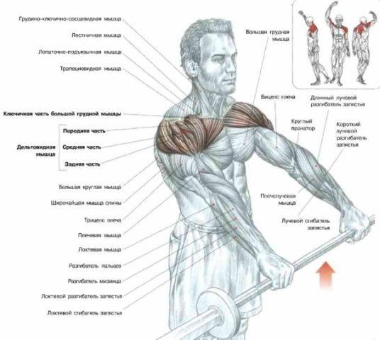 Чуть ниже можете изучить рисунок, тем самым вы сможете понять, как выполняется это упражнение!