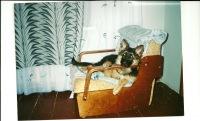 Татьяна Беленко(рослова), 27 апреля 1987, Одесса, id108397422