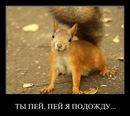 Антон Сливков фото #11
