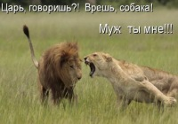 Оля Пожидаева, 3 августа , Санкт-Петербург, id274618