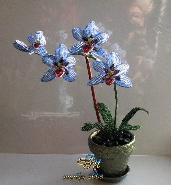 ...орхидеи из бисера схема