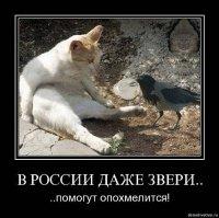 Евгений Акатов, Москва, id70102835
