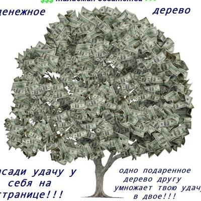 Римма Зайнуллина, 14 января , Стерлитамак, id133117050