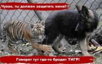 Loko Motiv, 9 мая 1998, Свердловск, id170346118