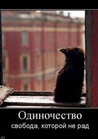 Little Blondi, 2 января , Нижний Новгород, id89360746