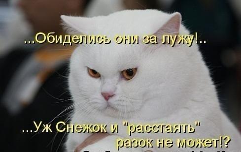 http://cs9892.userapi.com/u7634401/-14/x_cf9625f7.jpg