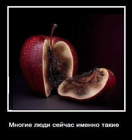 Бесплатные уроки фотошопа на русском языке подошел группе полковников