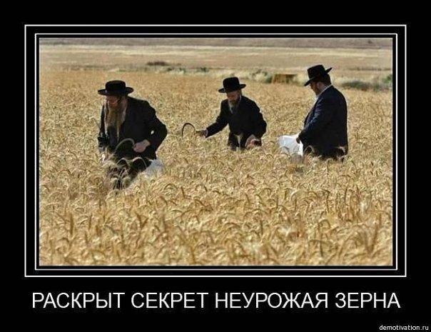 http://cs9894.vkontakte.ru/u4684751/116934863/x_21d74e9a.jpg