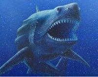 ...акулы мегалодон уйдут с аукциона не менее чем за $700,000.