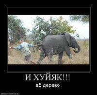 Rgdg Egfg, Донецк, id73636515