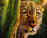 Леопард за деревом.