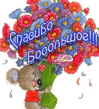 Олег Осипов, Саратов, id114835412